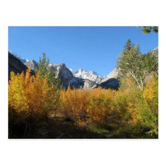 Blätter, das mit schneebedeckten Bergen ändert Postkarte