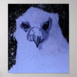 Blau-Graues Falke-Plakat
