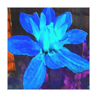 Blaue Dahlie Leinwanddrucke