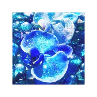 Blaue Diamant-Orchideen Gespannter Galerie Druck
