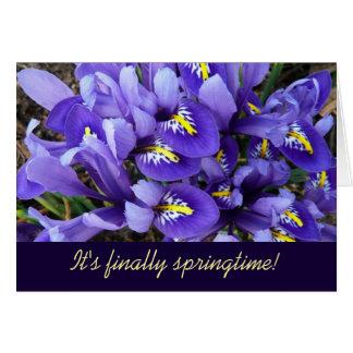 Blaue Iris-Frühlings-Miniaturkarte (freier Raum Karte