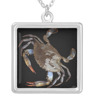 Blaue Krabbe Versilberte Kette