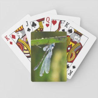 Blaue Libellen-Spielkarten Spielkarten