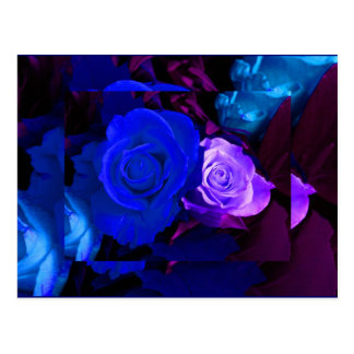 Blaue lila Rose Postkarte