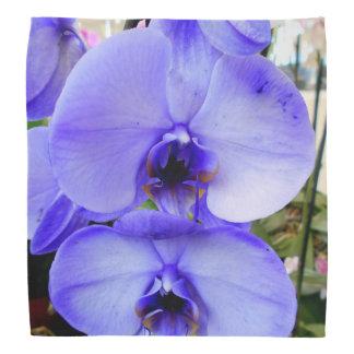 Blaue Orchideen Kopftuch