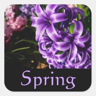 Blauer Hyazinthen-Frühlings-Aufkleber