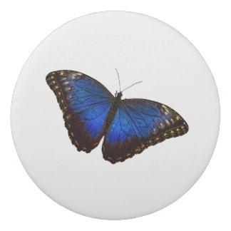 Blauer Morpho Schmetterling Radiergummis 0