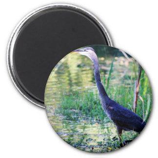 Blauer Reiher im Teich Runder Magnet 5,1 Cm