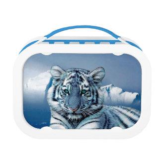 Blauer weißer Tiger