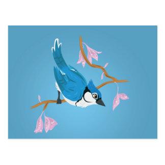 Blaues Jay Postkarte