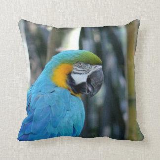 Blaues Papageien-Foto Zierkissen