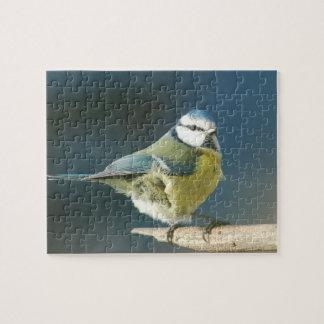 Blaumeise ~ Bluetit ~ Mésange bleue ~ by GLINEUR Puzzles