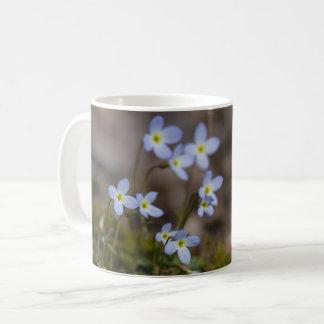 Bluets kleine lila Blumen-Wildblume-Tassen-Schale Tasse