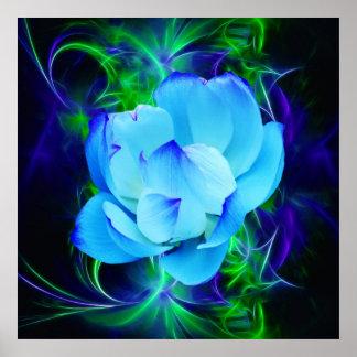 Blume des blauen Lotos und seine Bedeutung Poster