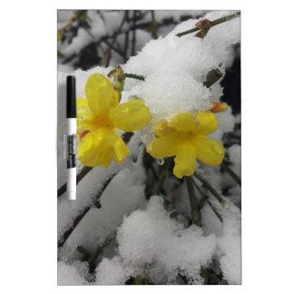 Blume des gelben Jasmins im Winterschnee Trockenlöschtafel