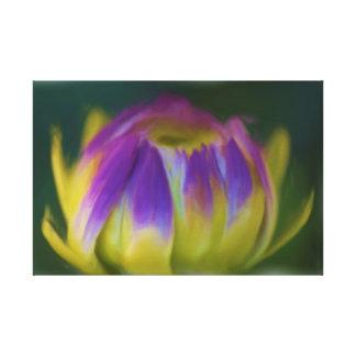 Blumen-Dahlie-Knospe Gespannte Galeriedrucke