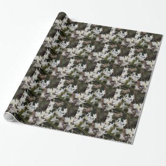 Blumen der Reisend-Freude (Clematis brachiata) Geschenkpapier