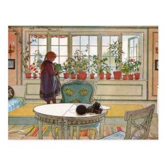 Blumen im Fenster-Kasten - Blomsterforstet Postkarte