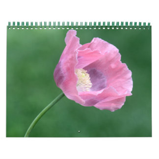 Blumen, Landschaften und Tier-Kalender Abreißkalender