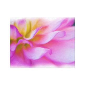 Blumen-rosa Dahlie Leinwanddrucke