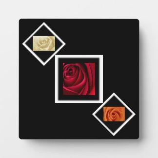 Blumen-Rosen in der Creme, im Rot und in der Fotoplatte