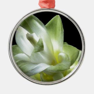 Blumenblüten bilden weißer Liebe-Kuss Silbernes Ornament