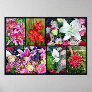 Blumencollagenplakat der schönen Lilie Poster