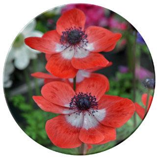 Blumendruck mit zwei roten Mohnblumen Porzellanteller