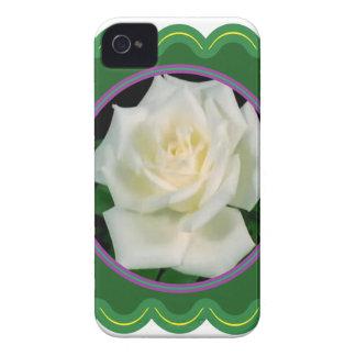 BlumenFoto der eleganten weißen Rosen-Blume auf iPhone 4 Hüllen