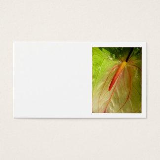 Blütenschweif Visitenkarten