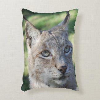 BOBCAT ~ Luchs ~ Lynx ~ Foto: Jean-Louis Glineur Dekokissen