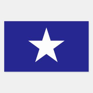 Bonnie-blauer Sumpf-Schwertlilie-weißer Stern Rechteckiger Aufkleber