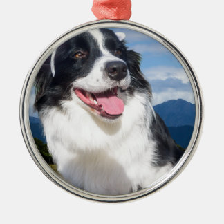 Border-Collie Rundes Silberfarbenes Ornament