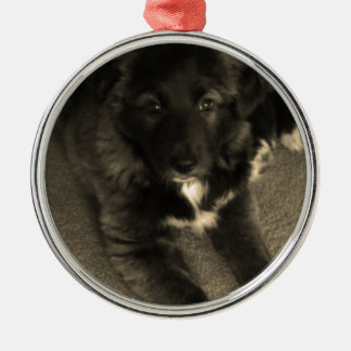 Border-Collie-Welpe Rundes Silberfarbenes Ornament