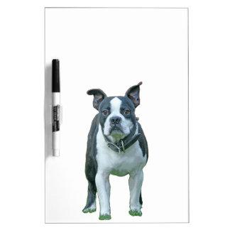Boston-Terrier 1b Memoboard