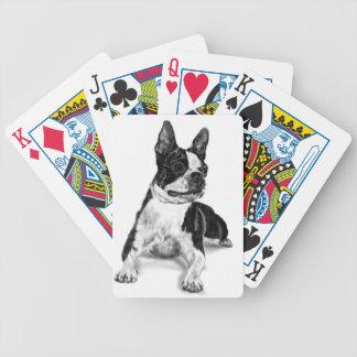 Boston Terrier Bicycle Spielkarten