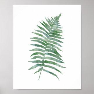 Botanische Farn-Blatt-Grünwatercolor-Natur-Pflanze Poster