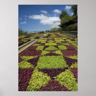 Botanische Gärten, Funchal, Madeira-Inseln, Poster
