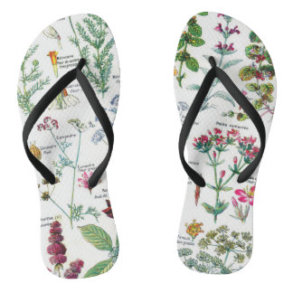 Botanische Illustrationen Flip Flops