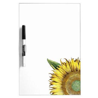 Botanische Sonnenblume-Blumen-trockenes Memoboard