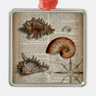 botanischer Druck Küstentritonshorn Vintagen Silbernes Ornament