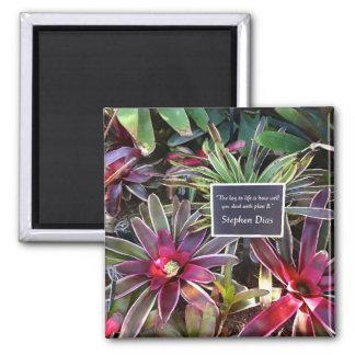 Botanischer GartenStephen Dias Neapels Florida Quadratischer Magnet