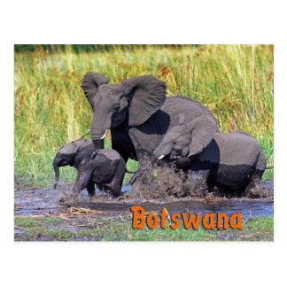 Botswana Postkarte