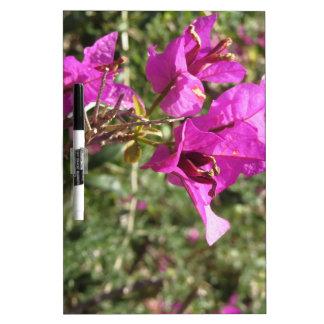 Bouganvilla-Blumen Memo Board