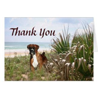 Boxer danken Ihnen, das Verstecken im Strandhafer Karte