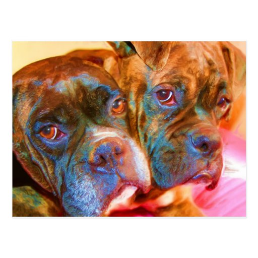 Boxer-Kunstpostkarte Postkarten