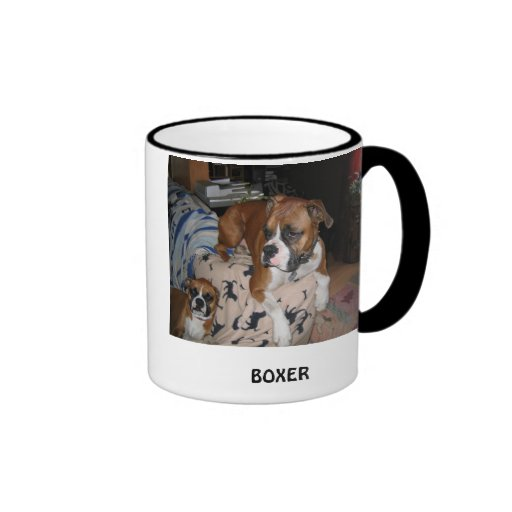 BOXER HAFERL