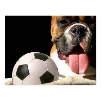 Boxer- und Fußballpostkarte Postkarte