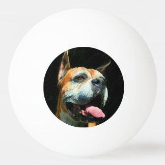 Boxerhund Tischtennis Ball