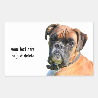 Boxerhundeschöne Foto-Porträtgewohnheit Rechteckiger Aufkleber